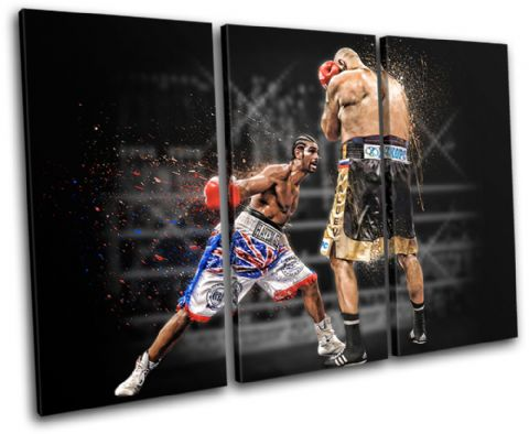 Boxing David Haye Sports - 13-1918(00B)-TR32-LO